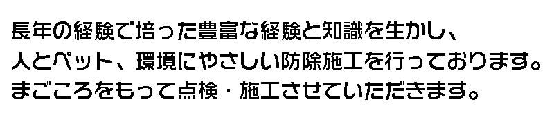 tsuboi0003hed